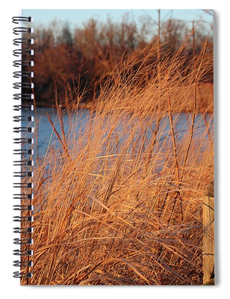 Amber Brush On The River Spiral Notebook