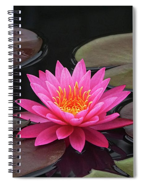 Fiery Beauty Of A Waterlily Spiral Notebook