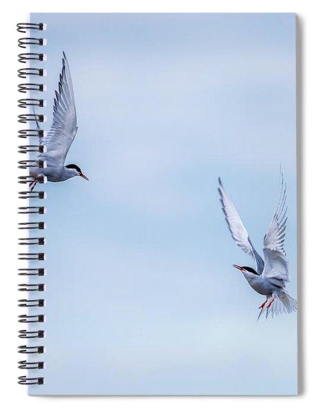 Fighting Terns Spiral Notebook