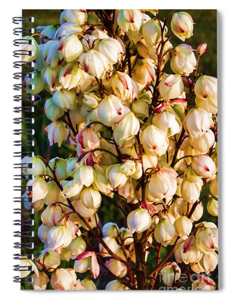 Filled With Joy Floral Bunch Spiral Notebook