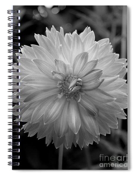 Filter Series 100 Spiral Notebook