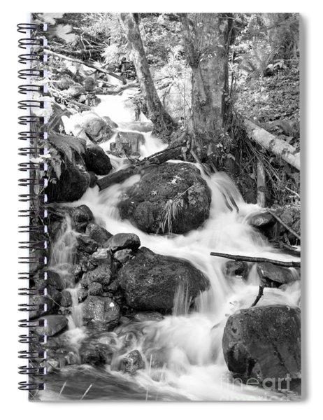 Filter Series 103 Spiral Notebook