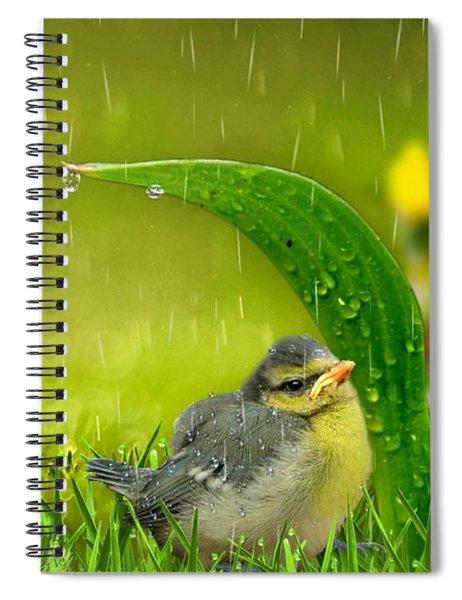 Finding Shelter Spiral Notebook