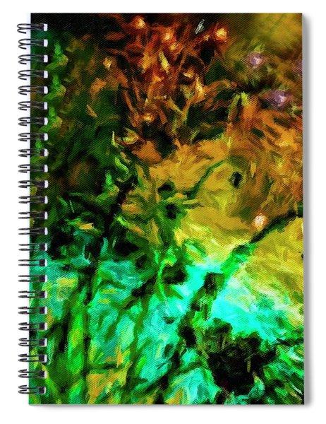 Fireworks 14 Spiral Notebook