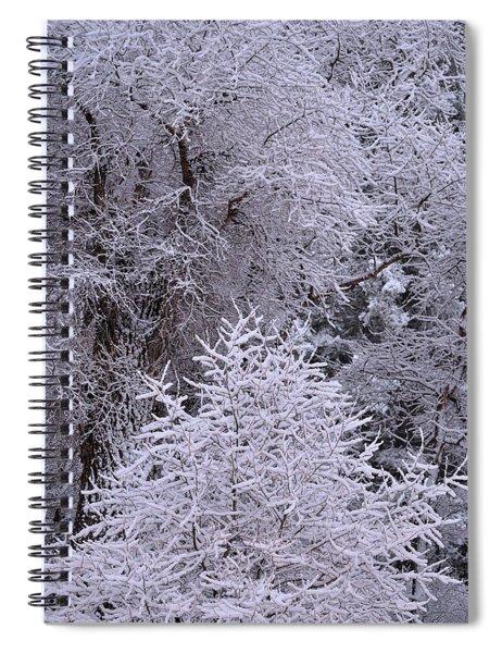 First Snow I Spiral Notebook