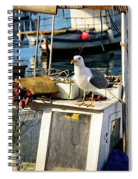 Fishing Boat Captain Seagull - Rovinj, Croatia Spiral Notebook