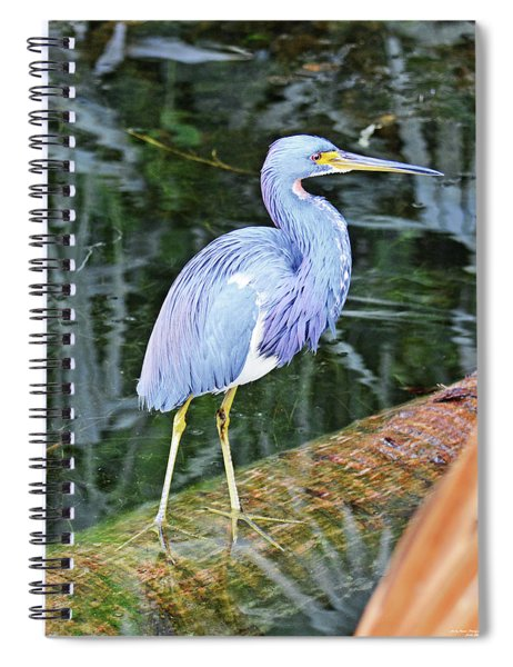 Fishing Hole Spiral Notebook