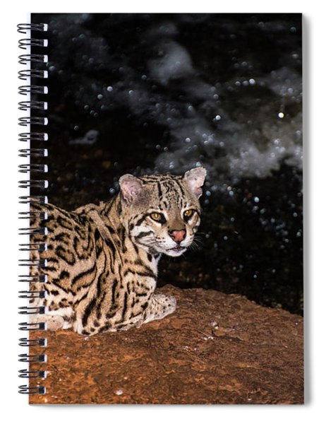 Fishing In The Stream Spiral Notebook