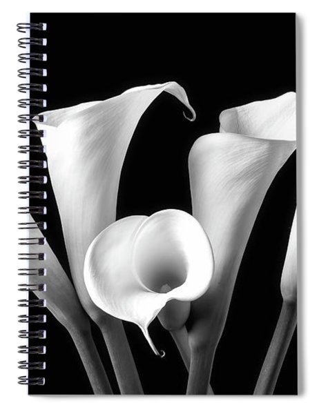 Five Black And White Calla Lilies Spiral Notebook