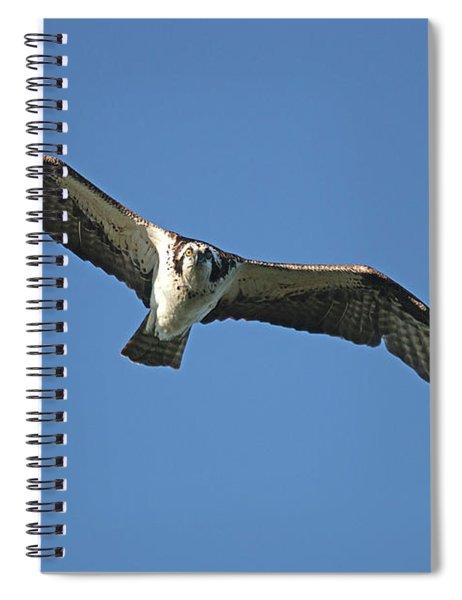 Fixation Spiral Notebook