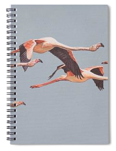 Spiral Notebook featuring the painting Flamingos In Flight by Alan M Hunt
