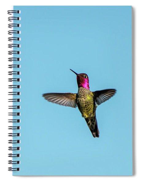 Flight Of A Hummingbird Spiral Notebook