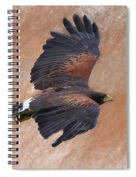 Flight Of The Harris Hawk Spiral Notebook