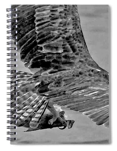 Flight Of The Osprey Bw Spiral Notebook