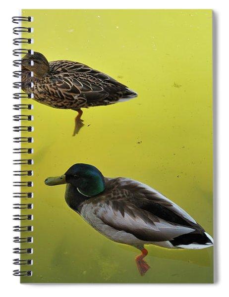 Floating Around Spiral Notebook