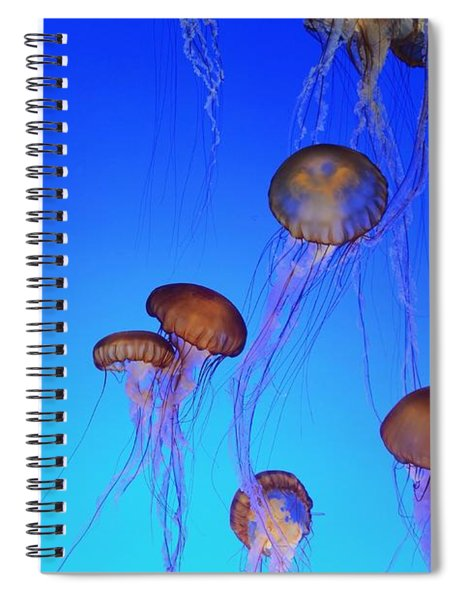 Floating Jellyfish Ballet Spiral Notebook