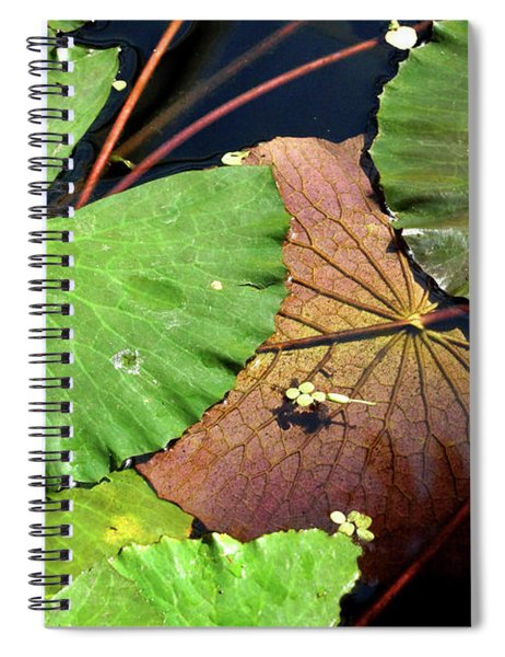 Floating Lily Pads Spiral Notebook