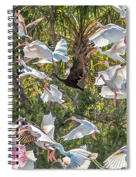 Flock Of Mixed Birds Taking Off Spiral Notebook
