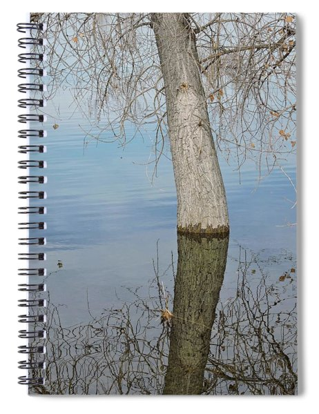 Flooded Tree Spiral Notebook