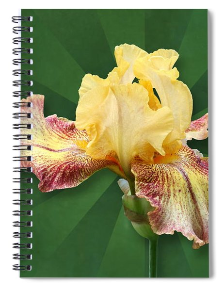 Floral Radiance Spiral Notebook