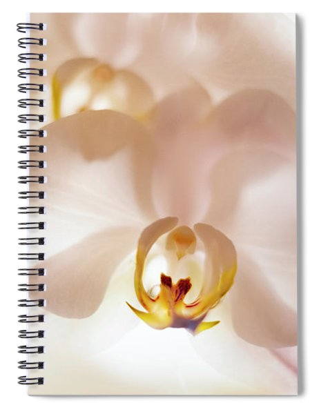 Flowers Delight- Spiral Notebook