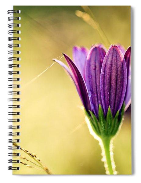 Flower On Summer Meadow Spiral Notebook