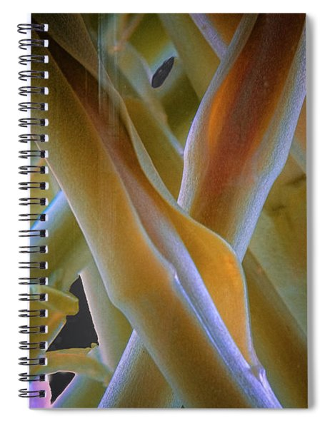 Flower Stems Spiral Notebook