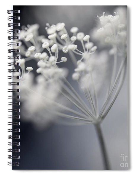 Flowering Dill Cluster Spiral Notebook