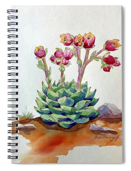 Flowering Succulent Spiral Notebook