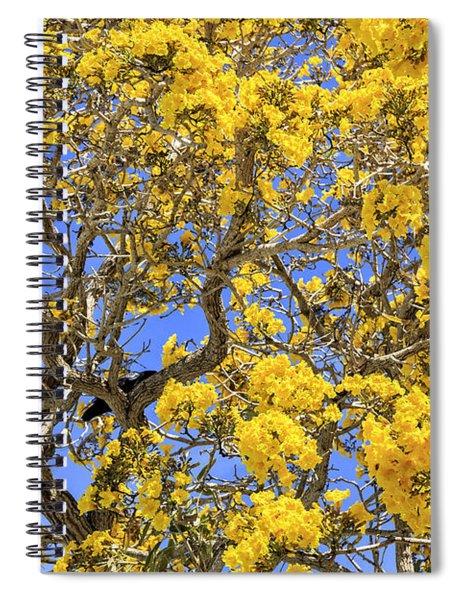 Flowering Tabebuias Tree Spiral Notebook