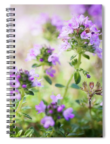 Flowering Thyme Spiral Notebook