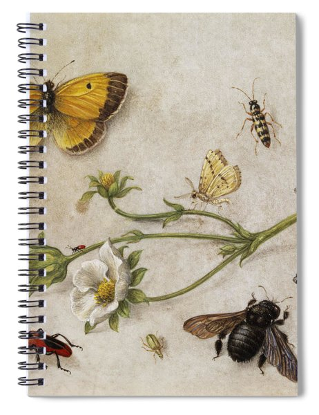 Flowers, Insects And Butterflies Spiral Notebook