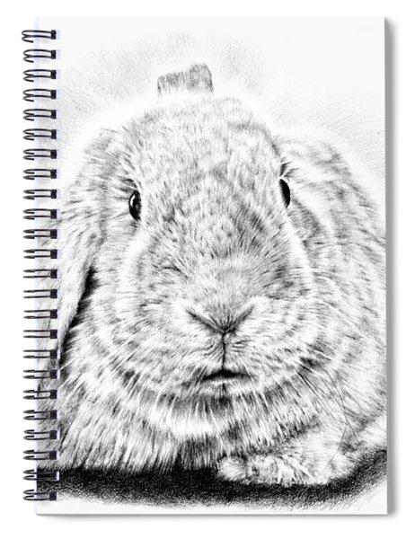 Fluffy Bunny Spiral Notebook