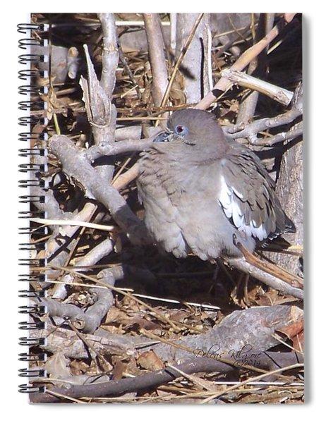 Fluffy Dove Spiral Notebook