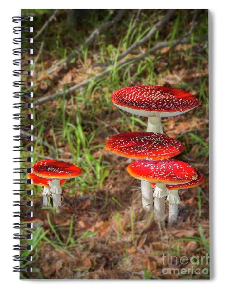 Fly Agaric Amanita Muscaria Spiral Notebook