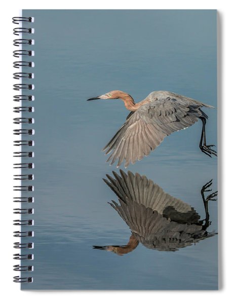 Fly By Reflection Spiral Notebook