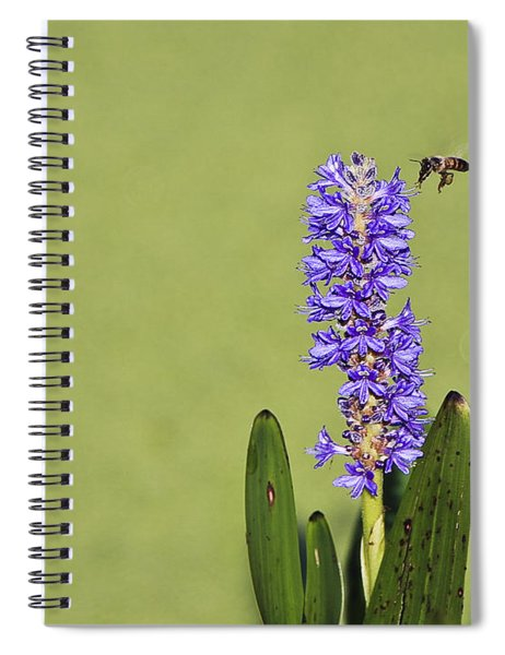 Flying And Buzzing Spiral Notebook