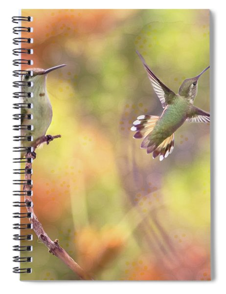 Flying Gems Spiral Notebook