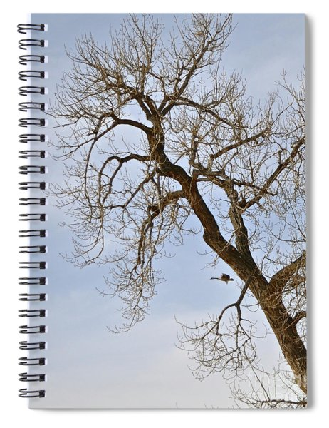 Flying Goose By Great Tree Spiral Notebook