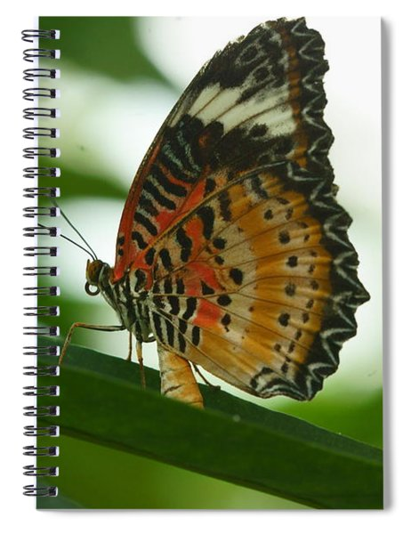 Flying High 4 Spiral Notebook