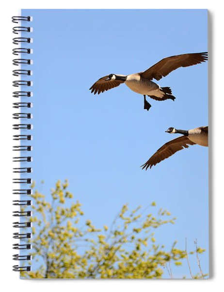 Flying Twins Spiral Notebook