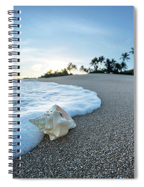 Foam Meets Shell Spiral Notebook