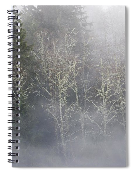 Foggy Alders In The Forest Spiral Notebook