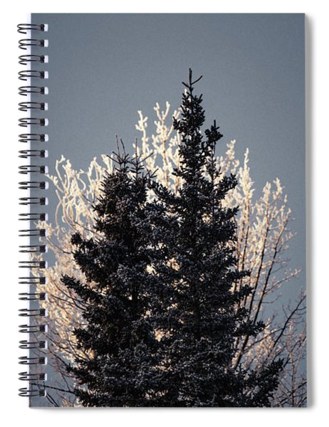 Foggy Days And Foggy Nights Spiral Notebook