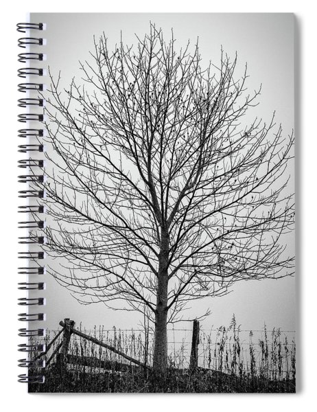 Foggy Lone Tree Hill Fine Art Spiral Notebook