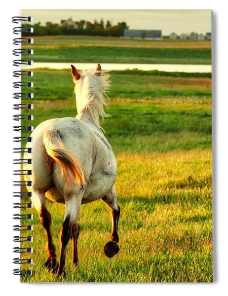 Follow My Lead Spiral Notebook