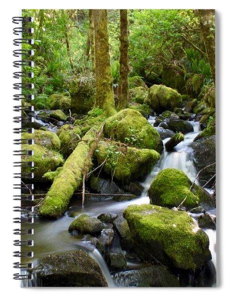 Forest Creek Spiral Notebook