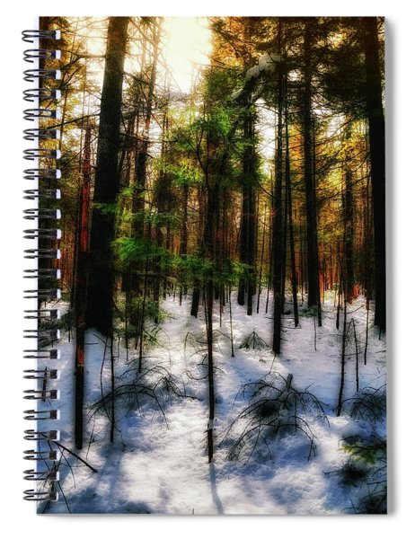Forest Dawn Spiral Notebook