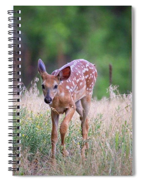 Forest Fawn Spiral Notebook