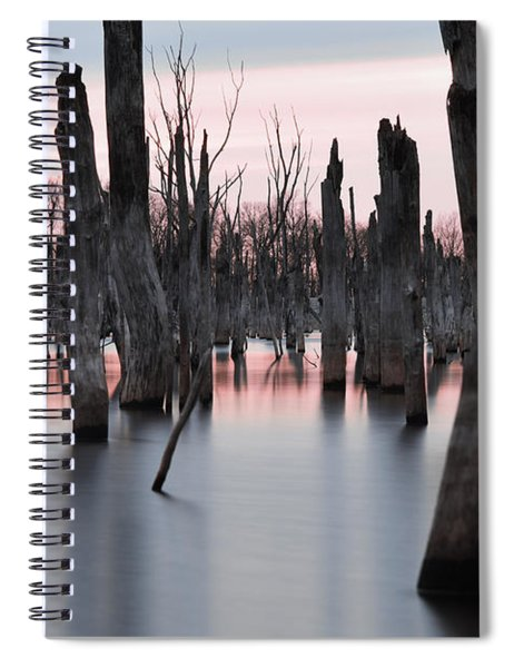 Forest In The Water Spiral Notebook